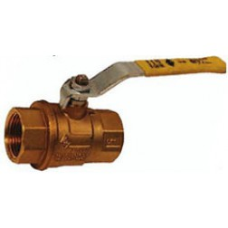 Couplings and Accessories - Imported Ball Valves